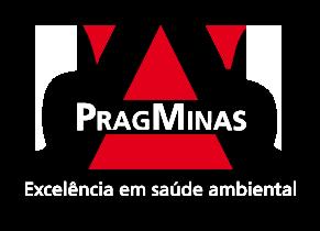 Pragminas